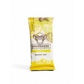 Chimpanzee - Lemon