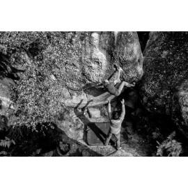 Training & Bouldering